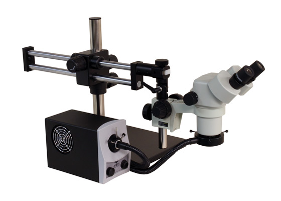 Microscope and magnifying tool